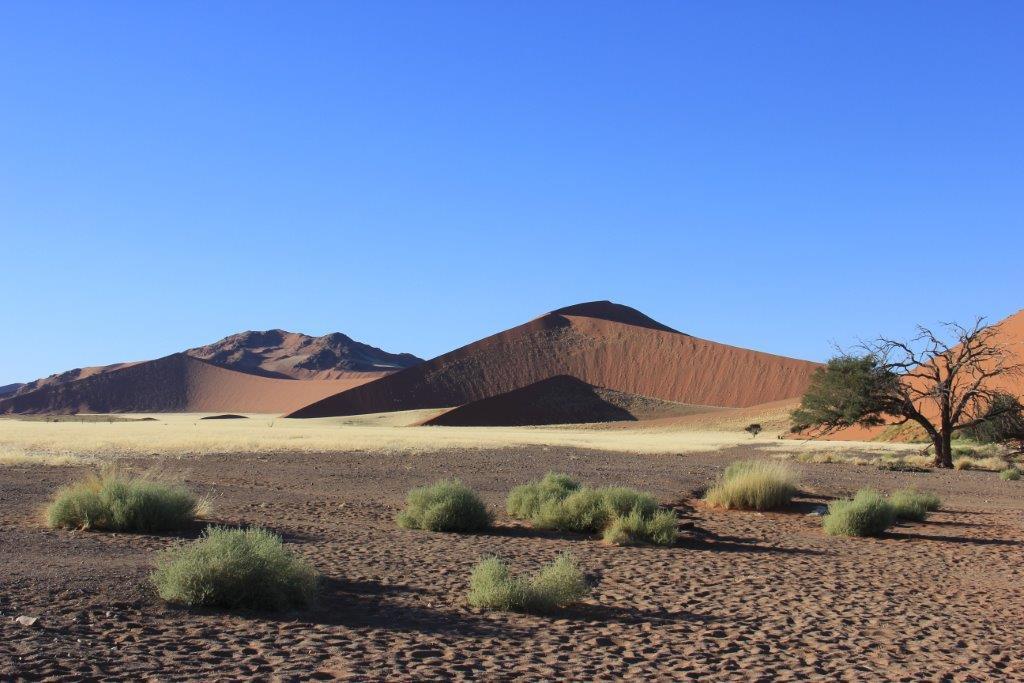 Namib Desert-Sossusvlei Park